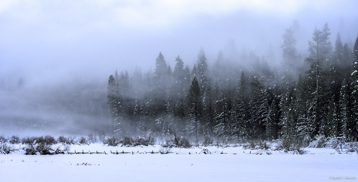 Afternoon winter winds in Yosemite