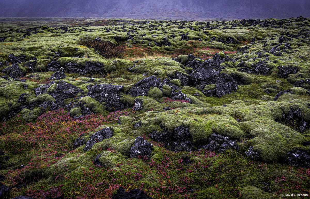 Iceland, Tundra, Golden Circle, Road, Colorful,, photo