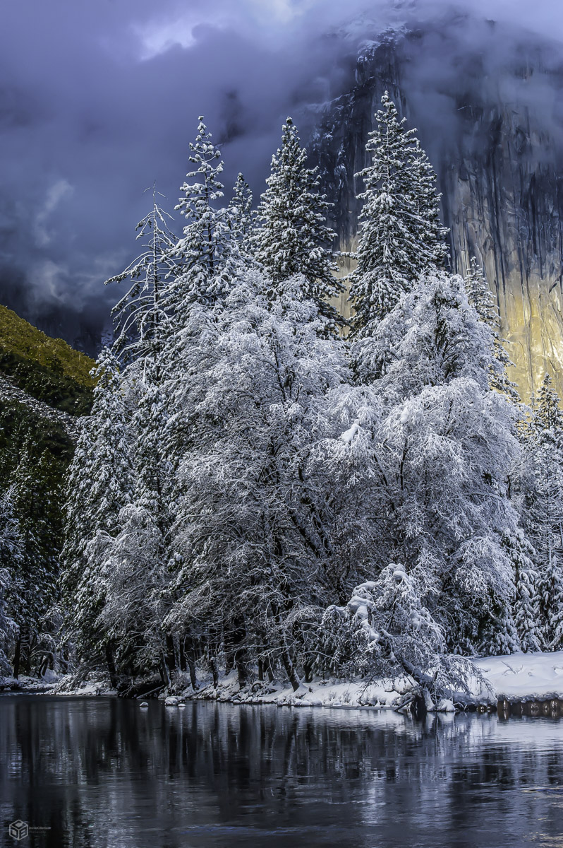California, Yosemite National Park, Yosemite River, trees, photo